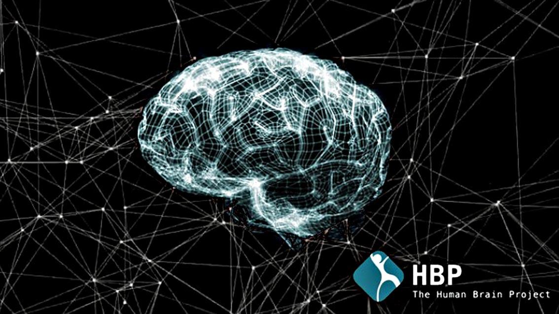 A che punto siamo con la simulazione del cervello umano?