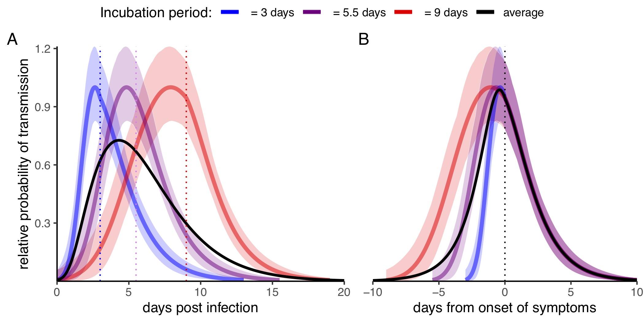 Quando è più contagiosa una persona affetta da coronavirus?