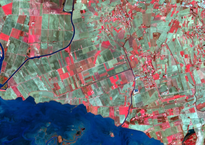 Imagine Satellitare False Color. Foto: Copernicus/Sentinel-2.